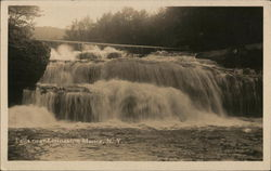Falls Near Livingston Manor Postcard