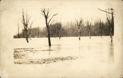 1913 Flood at Persom Mill