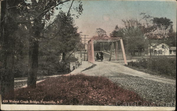 Walnut Creek Bridge Forestville New York