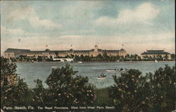 The Royal Poinciana - View from West Palm Beach