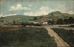 Picnic Train on Ligonier Valley R. R.
