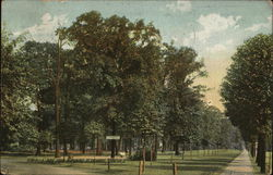 Nimisilla Park From Mahoning St. Entrance
