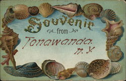 Souvenir from Tonawanda - Shells
