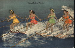 Aqua Maids of Florida