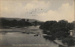 View on the Conewango Creek Postcard