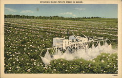 Spraying Maine Potato Field in Bloom