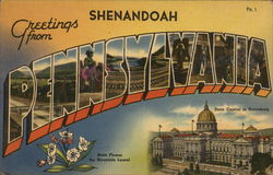 Greetings from Shenandoah Postcard