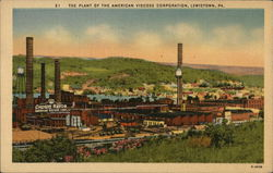 Plant of the American Viscose Corporation