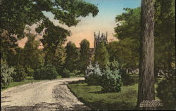 Manigault Park, University of the South Postcard