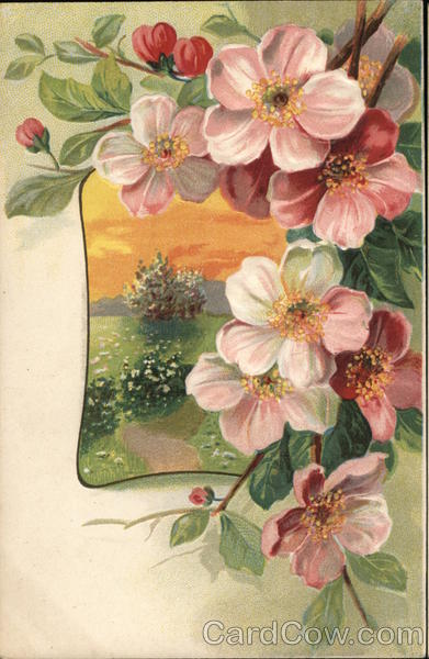 Beautiful Flowers Postcard
