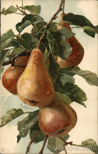 Pears on the Branch C. Klein Fruit