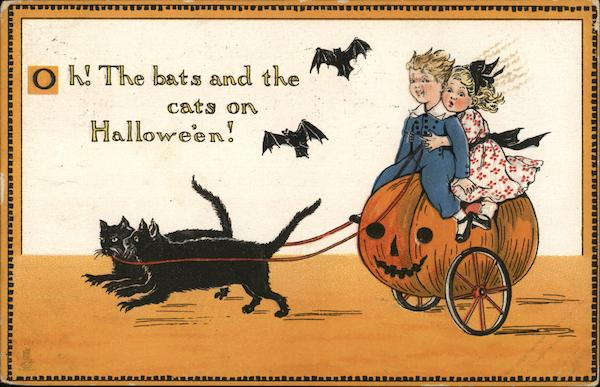 Oh! The bats and the cats on Halloween!