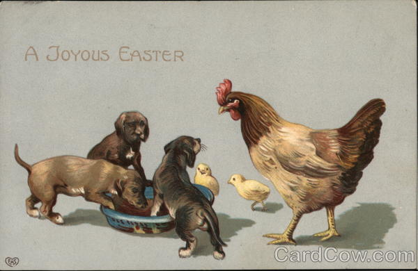 A Joyous Easter - Puppies Eating with Rooster and Chicks Watching