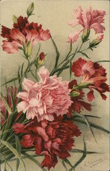 Beautiful Flowers Postcard