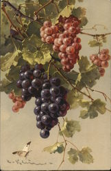 Purple and Red Grapes