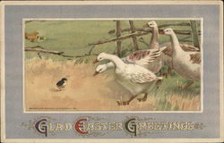 Glad Easter Greetings - Ducks and Chick