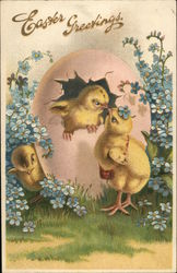 Easter Greetings - Chicks hatching from Pink Egg