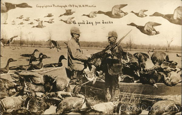 A good day for ducks...Hunting that is.... Exaggeration