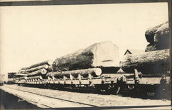 Train Hauling Old Growth Timber
