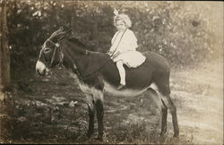 Girl on Donkey