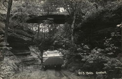 Red Bird Gorge