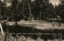 North Lake Shore of Eau Claire Lake