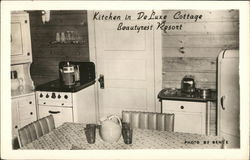 Kitchen in Deluxe Cottage-Beautyrest Resort