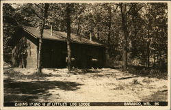 Cabins 17 and 18 at Little's Log Lodge Postcard