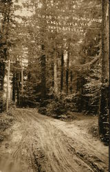 Road from Hemlock