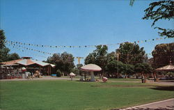 Rotary Playland