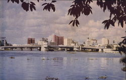Hillsborough River and Skyline