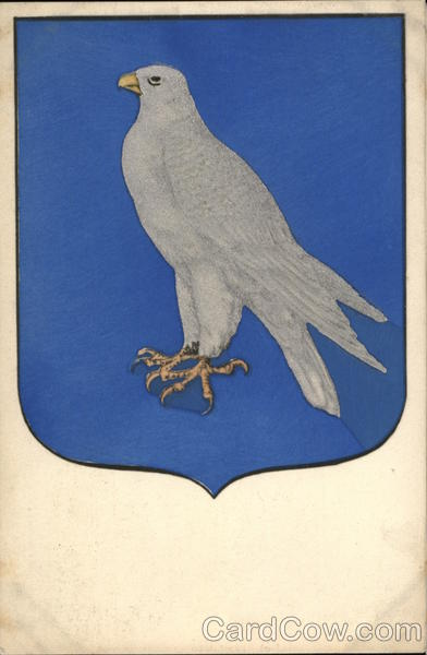 Icelandic Coat of Arms 1903-1919 Flags