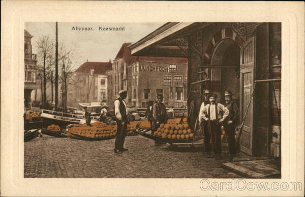 Cheese Market Alkmaar Netherlands Benelux Countries