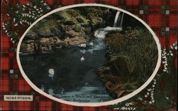 Swans in Pittencrief Glen Postcard