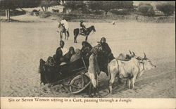 Six or Seven Women sitting in a cart, passing through a Jungle