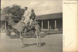 Messenger Camel