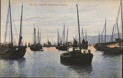 Chinese Harbour