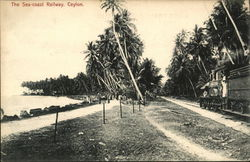 The Sea-coast Railway, Ceylon