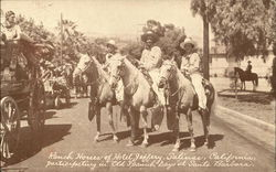 Ranch Horses of Hotel Jeffrey