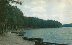 View of the Shoreline, Moon Lake at Moon Beach Camp