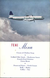 Teal Airlines Menu