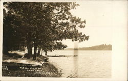 Scenic View on Long Lake Postcard