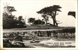 Cypress Court Golf Course