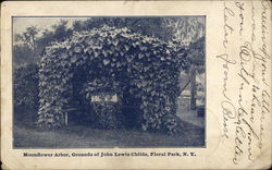 Moonflower Arbor, Grounds of John Lewis Childs School
