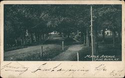 Maple Avenue