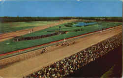 A Field Of Thoroughbreds Finishing Belmont Park, Elmont