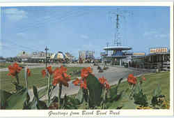 Greetings From Beech Bend Park Go Carts Postcard