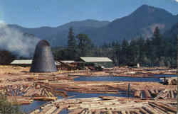 A Northwest Sawmill And Log Pond