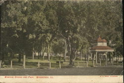 Mineral Spring and Park Postcard