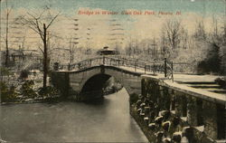 Bridge in Winter, Glen Oak Park